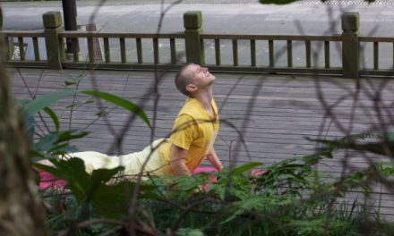 Thoughts on Hatha Yoga