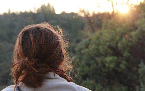 Meditation and the Self