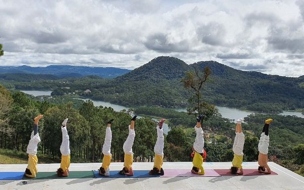 50 Years of the Sivananda Yoga Teachers' Training Course