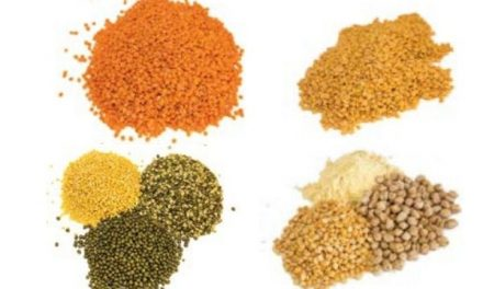 Take the Pulses on India